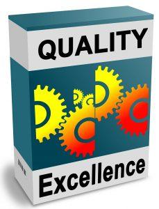 Excellence opérationnelle, Management de projet industriel